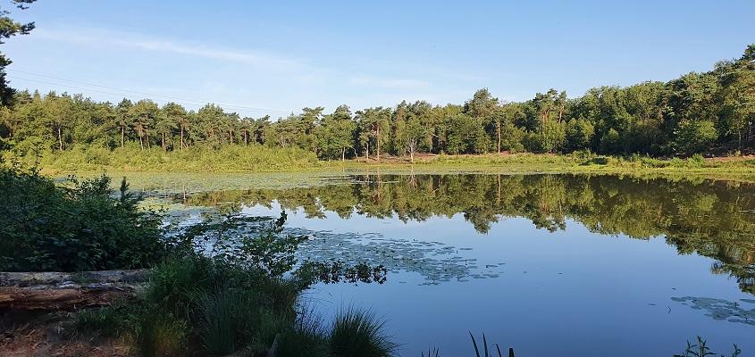 Wandeling in het Hart van Brabant over de Moerburgenroute bij het Schaapsven