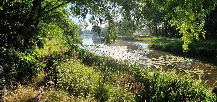 Wandeling in het Hart van Brabant over de Moerburgenroute bij de Voorste Stroom