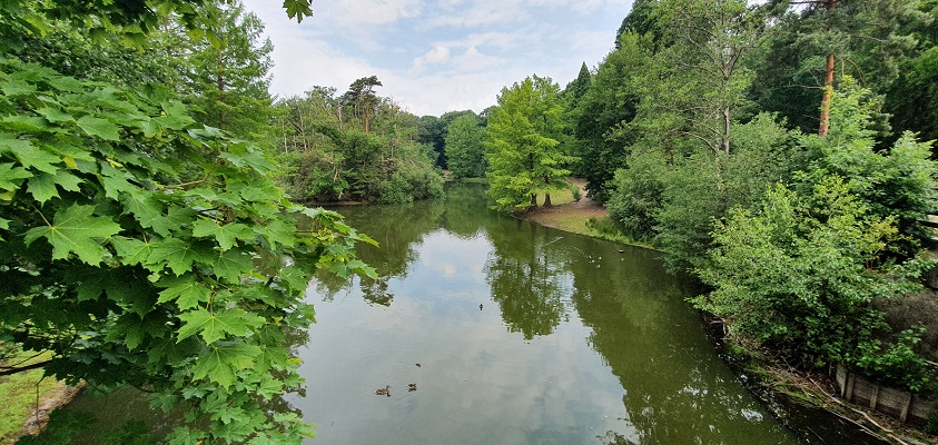 Wandeling over Trage Tocht Tilburg in het Wandelbos