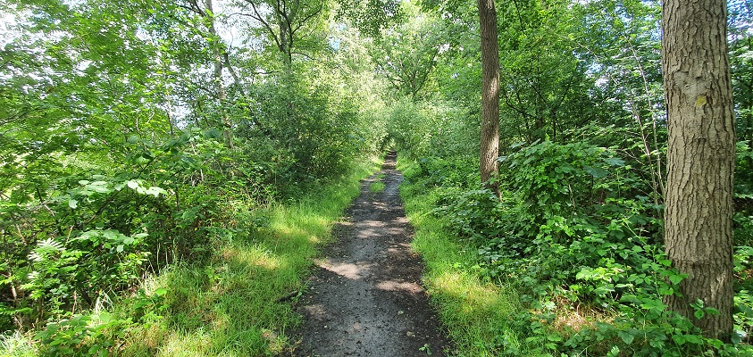 Wandeling over Trage Tocht Hilversum