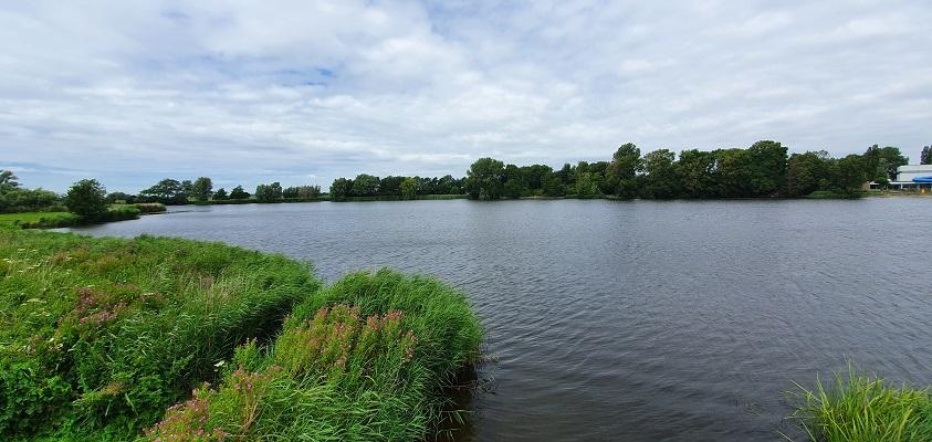 Wandeling over de Westfriese Omringdijk van Schoorldam naar Schagen bij het Schagerwiel