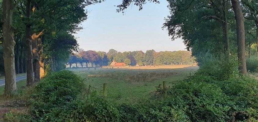 Wandeling over Andreas Schotel wandelroute in Esbeek
