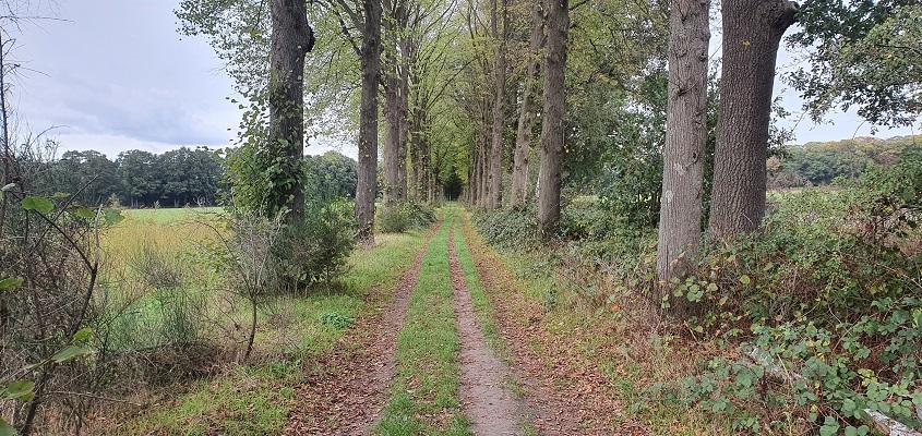 Wandeling over Ommetje Sint-Oedenrode