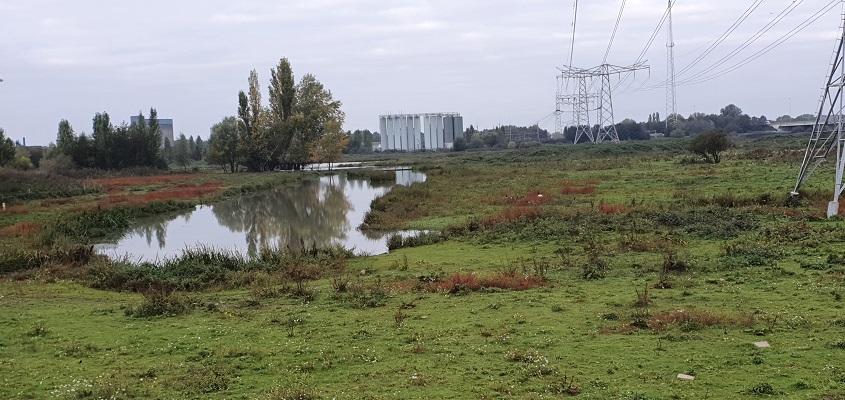 Wandeling in de omgeving van Den Bosch, Haverleij en Engelermeer, bij de monding van de Dieze