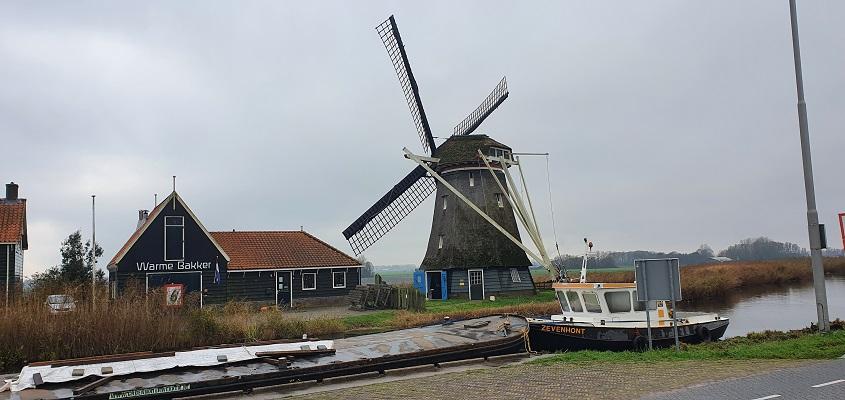 Wandeling over Westfriese Omringdijk van Ursem naar Alkmaar bij molen de Otter in Oterleek