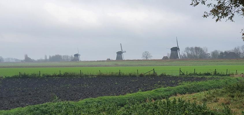 Wandeling over Westfriese Omringdijk van Ursem naar Alkmaar bij de strijkmolens bij Rustenburg