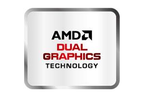 AMD Dual