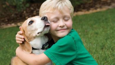 Photo of Σκύλος βοηθός, παιδιών και ενηλίκων με αυτισμό!