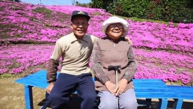 Photo of Σύζυγος φύτευε λουλούδια για 2 χρόνια ώστε να τα μυρίζει η τυφλή γυναίκα του [video]