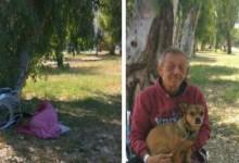 Photo of Πάτρα: Άστεγος καρκινοπαθής ζει στο πάρκο με μοναδική συντροφιά τα σκυλάκια του