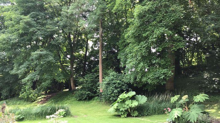 jardin Patrick 2