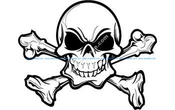 Skull Silhouette Details