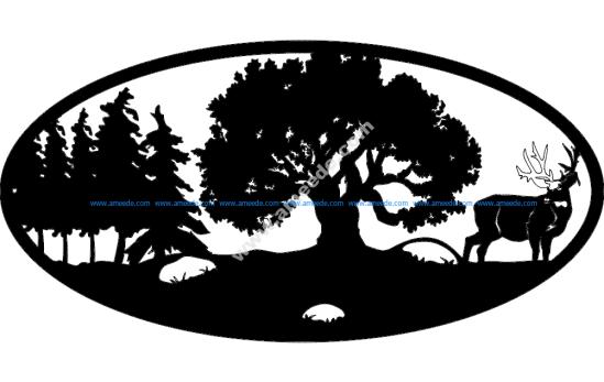 Oval Insert 6