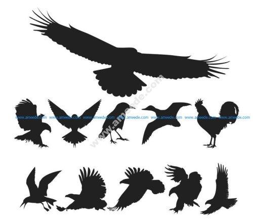Birds Silhouette Vector Pack