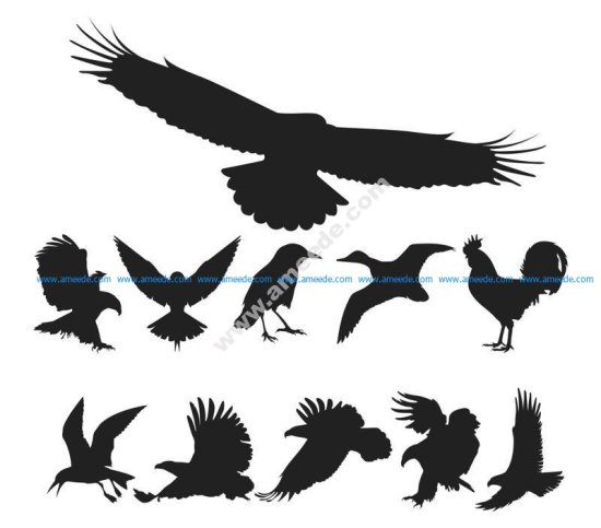 Birds Silhouette Vector Pack