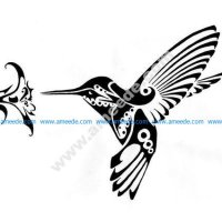 Hummingbird and Flower vector art