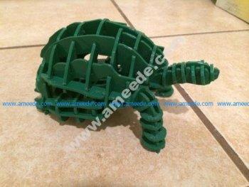 Tortoise Puzzle