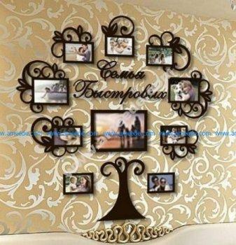 Acacia tree photo taken of the whole family