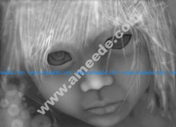 Big Eyes Grayscale Image BMPBig Eyes Grayscale Image BMP