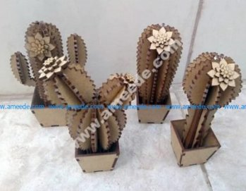 Wooden cactus flowers