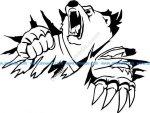 symbol of bear power