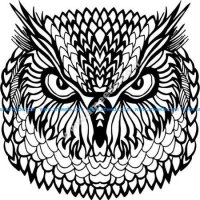 floral owl vector art