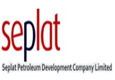 Seplat makes case for ANOH gas at LSE