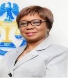 10-year Master Plan: SEC reiterates commitment to developing capital market