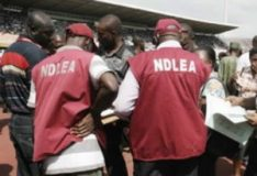 NDLEA arrests 64 drug traffickers at Lagos airport