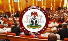 Senate Gives Committees Two Months to Work on PIB