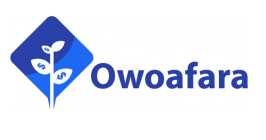 How Nigeria's Owoafara is connecting small businesses with finance, growth support