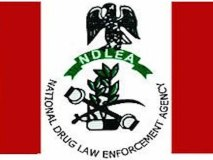 NDLEA Seizes 40 Parcels of Cocaine Worth over N32bn at Lagos Port