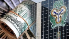 Foreign exchange inflow falls to $4.97bn