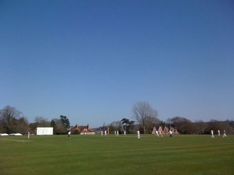 English cricket pitch no planes Alice