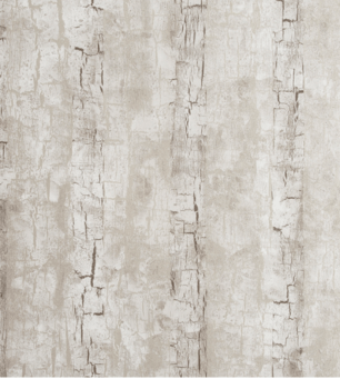 Tree Bark wallpaper in Birch by Clarke & Clarke