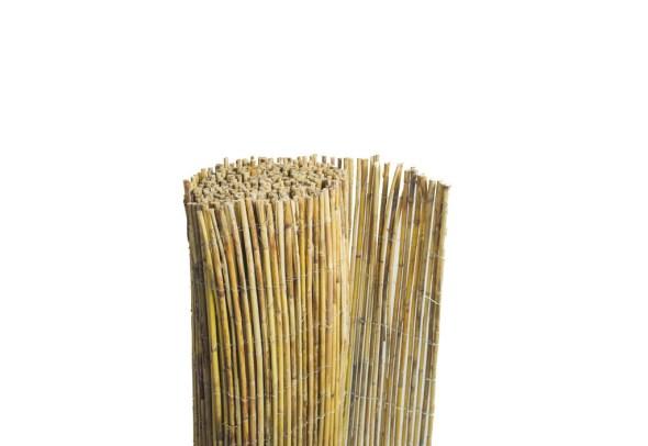 Clôtures Naturelles en Bambou