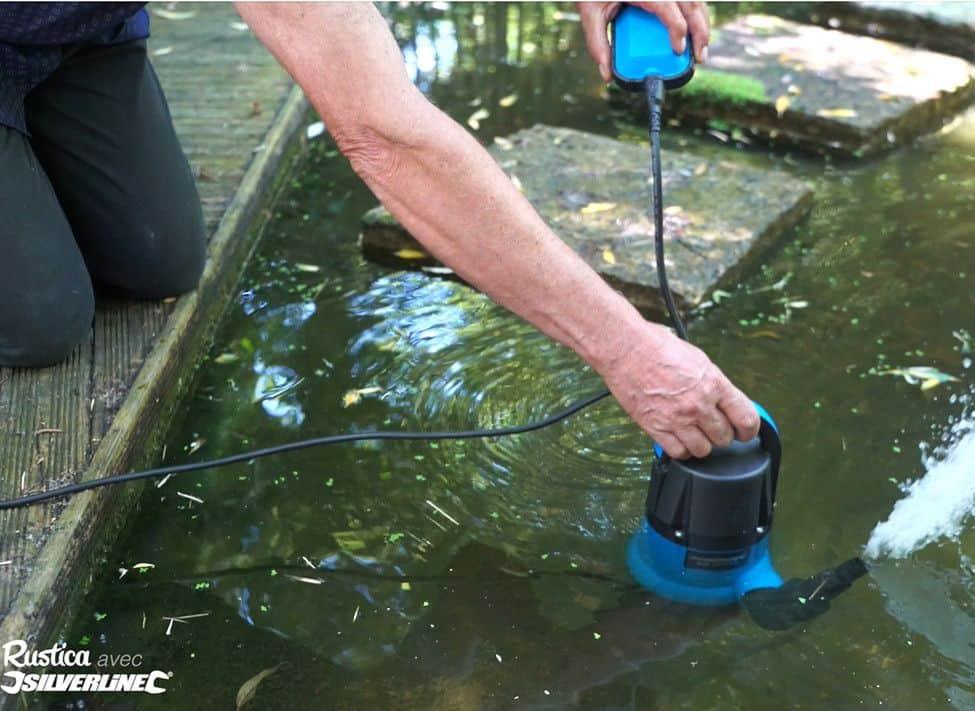 l entretien du bassin de jardin guide