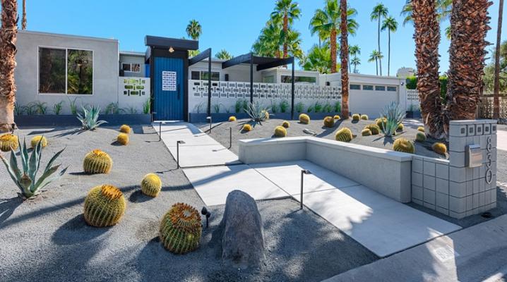 Crer Un Jardin Avec Des Cactus Et Des Palmiers
