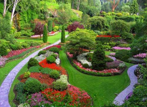 Quelques conseils pour bien amnager son jardin