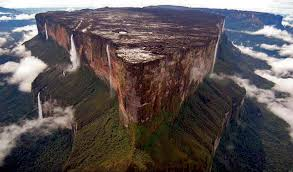 Mount Roraima: The Tree of Life