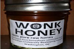 Wonk Honey