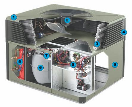 American Standard Compressor Wiring Diagram Trane Xl1400 Heat Pump Bindu Bhatia Astrology