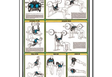 Bench Press Technique