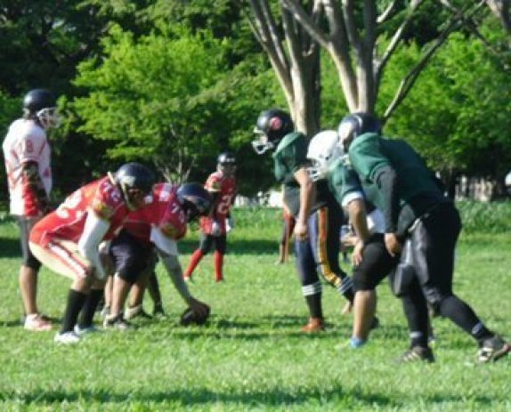 Leones of Managua in green; Iron Wolves in red