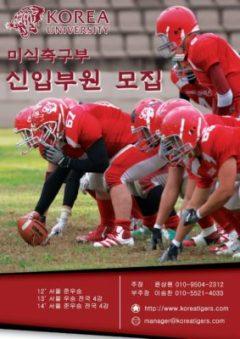 Korea Tigers