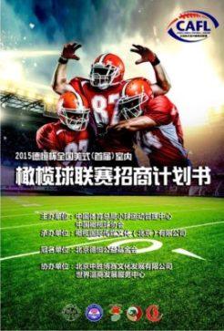 China - DeHeng Bowl poster-2