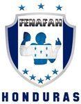 New FENAFAH Logo