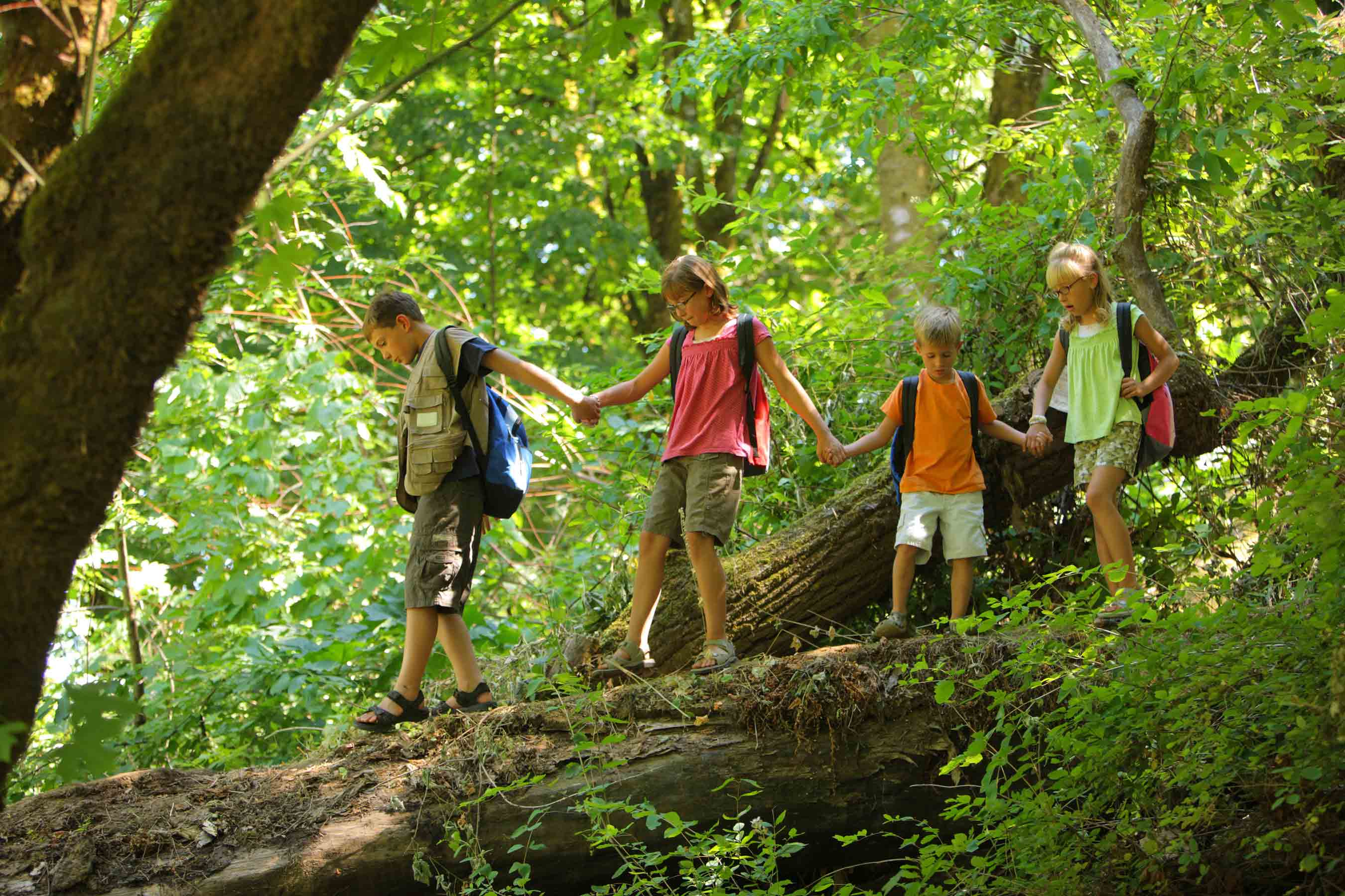 Kids hiking in a forest. These are the humans environmentalists worry about, these four, and a few billion like them.  Photo from American Forests.