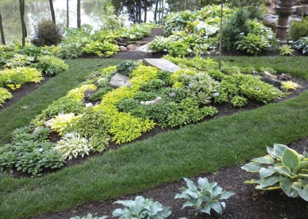 hosta gardens - garden
