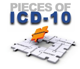 Don't Know What is ICD-10-PCS? Read this